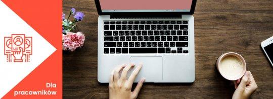 Jak z powodzeniem szukać informacji o pracodawcy?